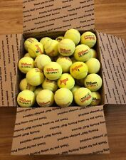 60 Used Country Club Tennis Balls for Dog Toys, Chairs, Schools-Premium Quality