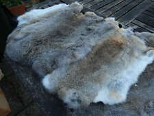 5 x Grey Brown Rabbit Skin Fur Pelts - craft, dummy, dog training, clothing accs