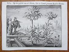 Original Dutch Engraving Emblem Flower Iris Keysers Kroon - 1659#