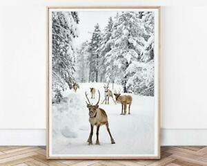 Reindeer Print Winter Decor Instant Home Decor Art Signature Wall Posters/ Print