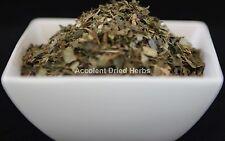 Dried Herbs: WITCH  HAZEL   Hamamelis virginiana  50g