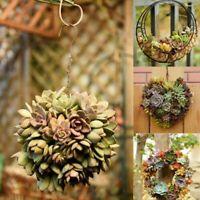 Suspendu Fleur Pot Fer Mural Succulent Pots de Rustique Plante Support Home Déco