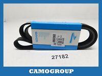 Zahnriemen V-Gerippt Belt Dayco 1570MM AUDI A4 A6 Fiat Qubo BMW Serie 5 E34