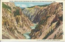 Postcard - Grand Canyon of Yellowstone - Yellowstone.  Unposted J E Haynes