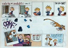 Calvin and Hobbes by Watterson - large half-page Sunday comic, February 27, 1994
