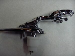 Jaguar X-type S-type Leaping Cat Hood Badge emblem Ornament Leaper New 2000-2009