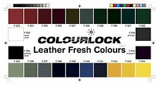 COLOURLOCK Colour Chart for choosing the correct leather colors & fillers