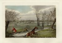 FOX HUNTING RED COAT FOX HUNTER WITH WHIP AND HORSE TAKE A SPILL IN THE BROOK