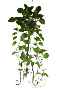 Metal Plant Stand Flower Holder Rack Shelf Display Home Garden Patio Decor F2