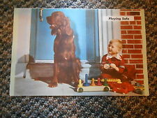 Old Vintage Paper Picture Dog Kid Toys & Half Page Chevrolet Chevy Safety Check