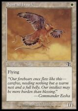 MTG 4x SUNTAIL HAWK - Judgment *Top Bird Fly*
