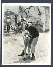 ALAN LADD ON SET BTS - KEY BOOK LINEN-BACKED VG+ COND