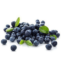 50x Blueberry Tree Seed Fruit Blueberry Seed Potted Bonsai Tree Seeds Plant