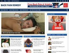Back Pain Remedy Blog Established Profitable Turnkey Website For Sale