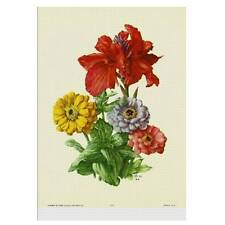 Flowers by Seguy- #913 - Individual Full Colour Vintage Lithoprint
