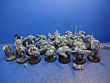 8+1 Scouts + 10 Blutwölfe der Space Wolves