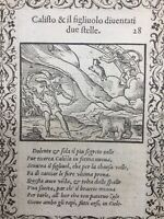 Gravure Ours 1559 Constellation Grande Ourse Callisto Astronomie Ovide Arcadie