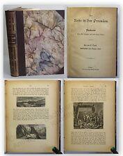 Taine Eine Reise in den Pyrenäen 1878 Gebirge Landeskunde Geografie Reisen xy