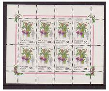 Russia - SG 6401 x 8 (1 sheetlet) - u/m - 1993 50r Pot Plants