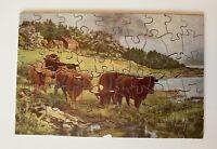 Vintage Wooden Hand Cut Jigsaw Puzzle Highland Cattle 68 Unique Pieces