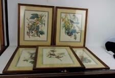5 Bird Prints With Matching Frames