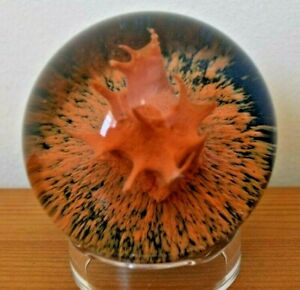 Super Rare Vintage CAITHNESS ORANGE CORAL Paperweight Limited Edition 500 -1972