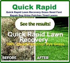 2 kg Quick Rapid Lawn Recovery Grass Seed Fast Repair Dog Urine Patch IVISONS