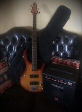 Peavy International Bass Guitar & Amp & Fender Flight Bag