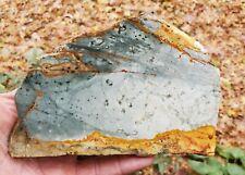 New listing Beautiful - Rocky Butte Picture Jasper Slab 227 gr. - 3192
