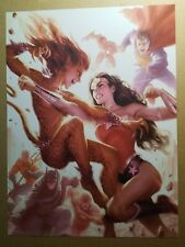Wonder Woman Cheetah Superman Batman Flash  DC Comics Poster by Alex Garner