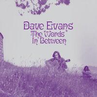 """Dave Evans : The Words in Between VINYL 12"""" Album (2018) ***NEW*** Amazing Value"""