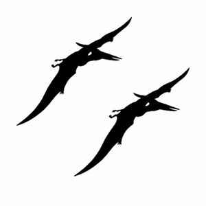 Qty 2 Dinosaur Pteranodon 2 Wall Sticker Kids Decal Pack BB Any Colour