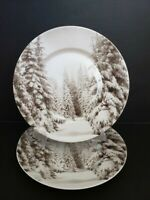 PIER 1 WINTER FOREST CHRISTMAS TREES PORCELAIN DINNER PLATES SET OF 2 SNOW NEW