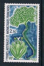 French Antarctic/TAAF 1993 Lyallia kerguelensis  SG 309 MNH