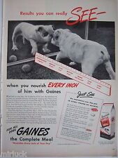 1945 Gaines Dog Meal Food Bulldog in Mirror Ad