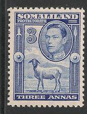 Somaliland Protectorate #87 (SG #96) VF MNH - 1938 3a Blackhead Sheep KGV