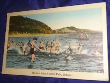 RP2372 Vtg PostCard Sturgeon Lake Fenelon Falls ON
