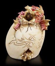 DRAGON Cova da uovo - COLOR ORO PERSONAGGIO Fantasy Bambino