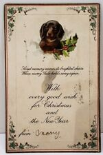 Christmas Greetings Embossed Puppy & Holly Tuck 1829 Series c1909 Postcard D5