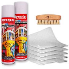 (37,38€/L) 2x 400 ml GRAFFITIENTFERNER Farbentferner Farblöser Spray + Zubehör