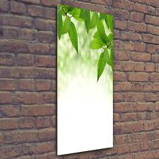 Wand-Bild Kunstdruck aus Hart-Glas Hochformat 70x100 Weg zum Strand