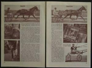 Harness Horse Racing Trotters Pacers 1946 vintage pictorial