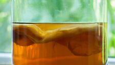 1st Class Post! Organic tè kombucha Starter Pack Scoby + liquido istruzioni stampate