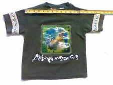 6 Size Boys shirt Disney dinosaur Allosaurus changing hologram Jurassic style