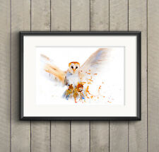 WILL ELLISTON Barn Owl Bird Watercolour PRINT original painting signed artist HQ
