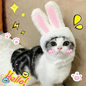 BWOGUE Cute Costume Bunny Rabbit Hat with Ears for Cats & Small Dogs Party Costu