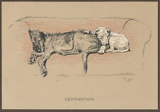 CECIL ALDIN DOG PRINT CRACKER BULL TERRIER MICKY IRISH WOLFHOUND HUNTING FARM 9