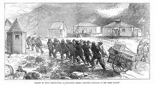 Isole Kerguelen transito di Venere osservazioni-Antico stampa 1875