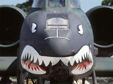 MILITARY AIR PLANE FIGHTER JET THUNDERBOLT NOSE GUN SHARK POSTER PRINT BB1121A