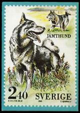 JAMTHUND SWEDISH ELKHOUND OFFICIAL SWEDEN STAMP 1989 DOG PICTURE POSTCARD